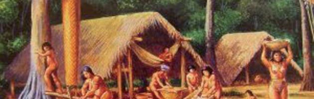 Les premiers occupants de l 39 archipel les populations am rindiennes piton bungalows - Cours de cuisine en guadeloupe ...